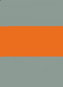 Actifio CSE Logo