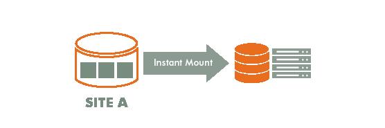 9 Actifio VDP Web Diagrams_Instant Mount