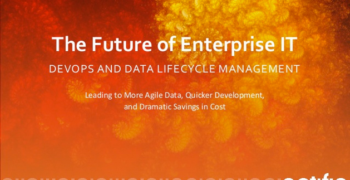 The Future of Enterprise IT: DevOps and Data Lifecycle Management