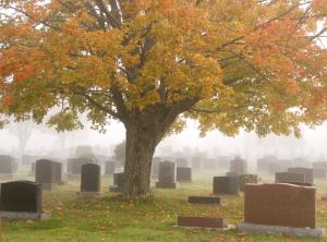 graveyard_img