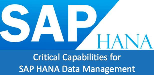 SAP Hana Data management