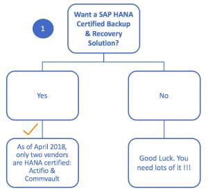 SAP Data Management