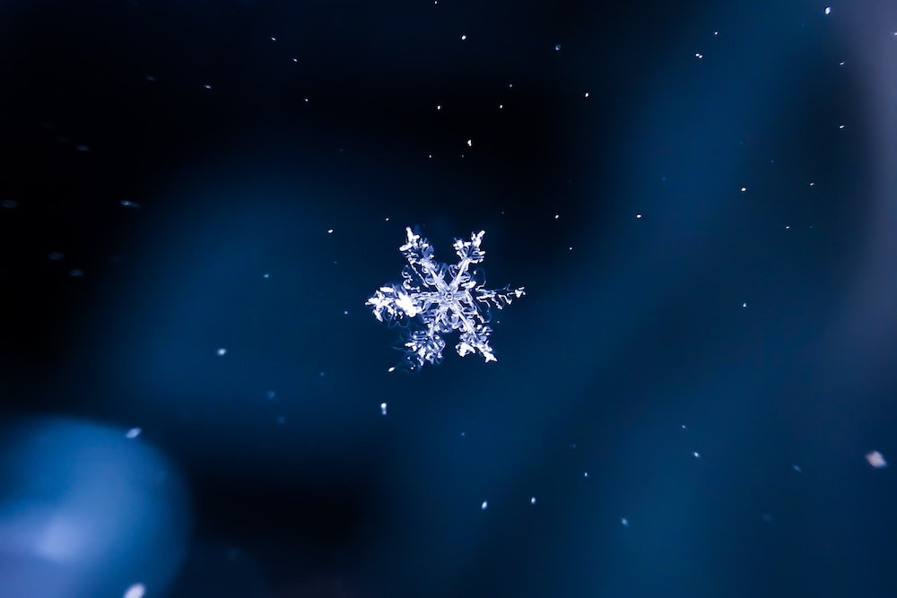 The Snowflake for Data Management